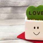 引っ込み思案でも恋愛は上手くいきます!恋人ゲットに大成功