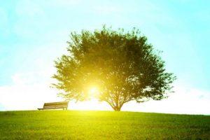 雑談力を磨く~鍛えることなく自然とコミュニケーション上手にイメージ画像5